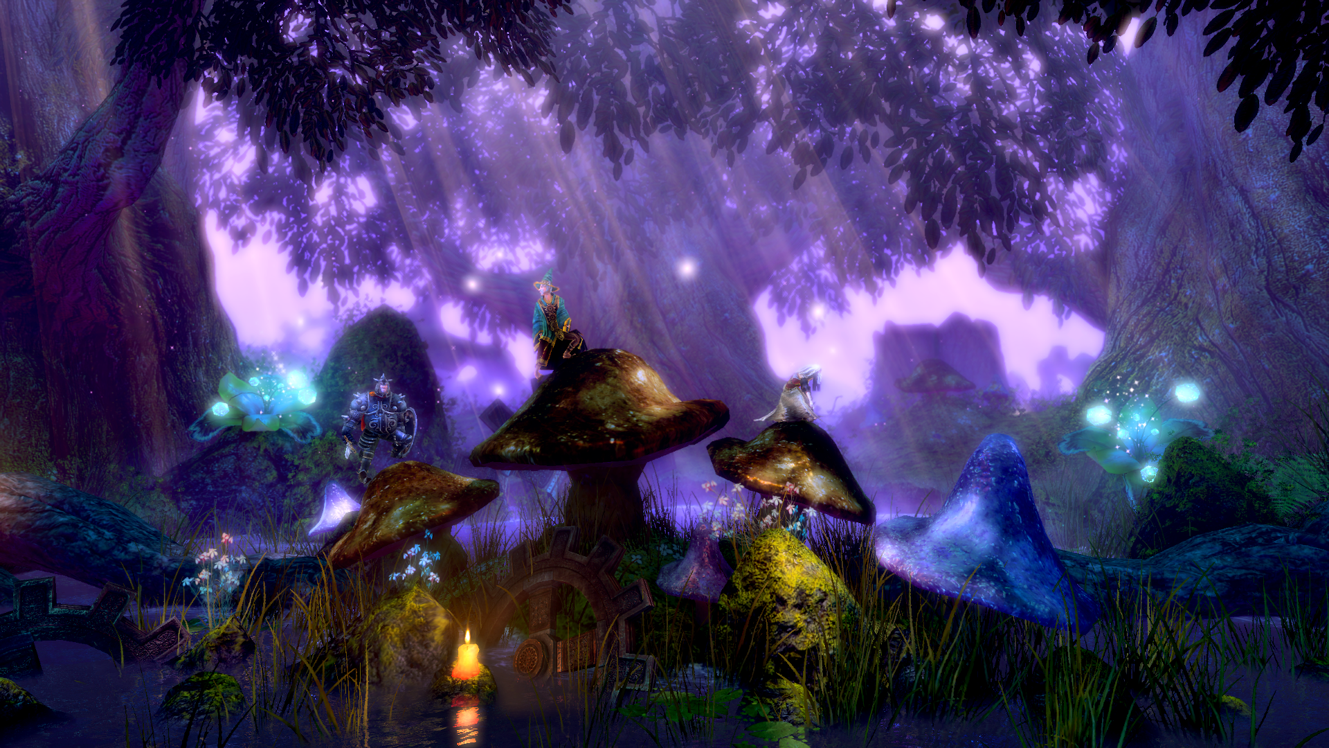 Trine_Enchanted_Edition_Forest1_Mushrooms3.png